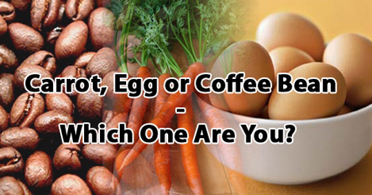 carrot-egg-or-coffee-bean
